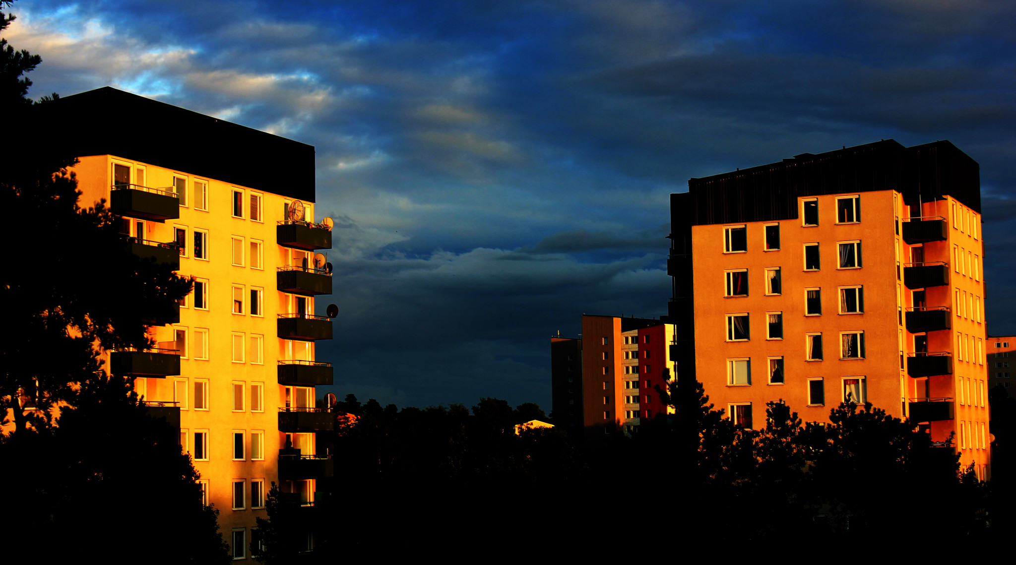 Rågsved i Solnedgång.